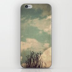 Unkindness iPhone & iPod Skin