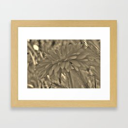 Petals From the Side Framed Art Print