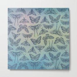 Lepidoptera Blue Metal Print