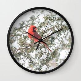 Cardinal on a Snowy Cedar Branch (sq) Wall Clock