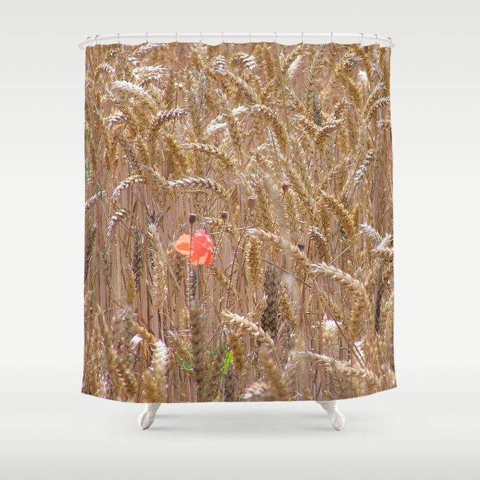 Poppy in a wheatfield Shower Curtain by marzipanthecat | Society6