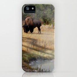 Buffalo at Thermal Pool iPhone Case