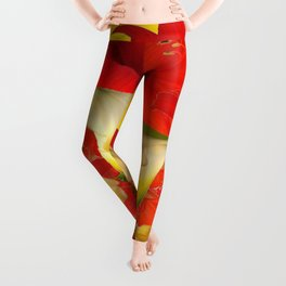 RED AMARYLLIS & CALLA LILY HOLIDAY FLORALS Leggings
