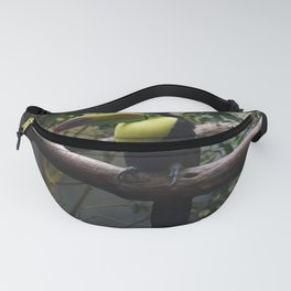 National Aviary - Pittsburgh - Keel Billed Toucan 1 Fanny Pack
