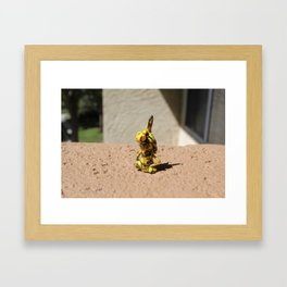 the protector....000111 Framed Art Print