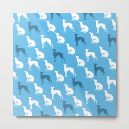 Greyhound Dogs Pattern On Blue Color Metal Print