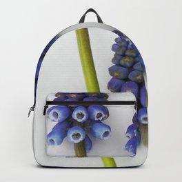 Muscari - Blue Grape - JUSTART © Backpack