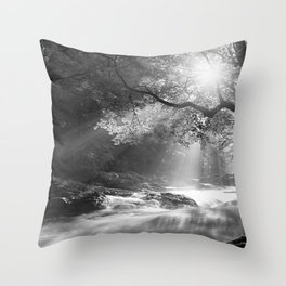 See the beauty series - I. -  Throw Pillow