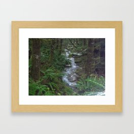 Stream out in the woods Framed Art Print