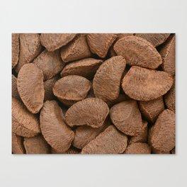 Brazil nuts Canvas Print
