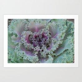 Cabbage Fractal Art Print