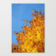 Herbstfarben  Canvas Print