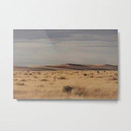 Marfa Landscape Metal Print