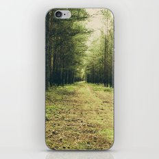 Forest Path... iPhone Skin
