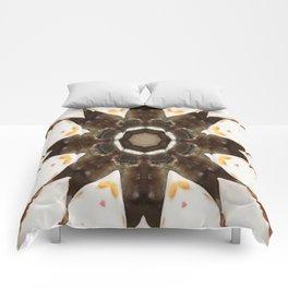 Edge of Desire Comforters