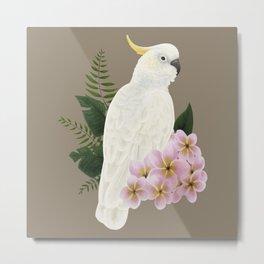 Sulphur Crested Cockatoo II Metal Print