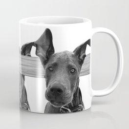 Dog Crosses Line Coffee Mug