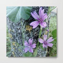 Purple flowers 10 Metal Print