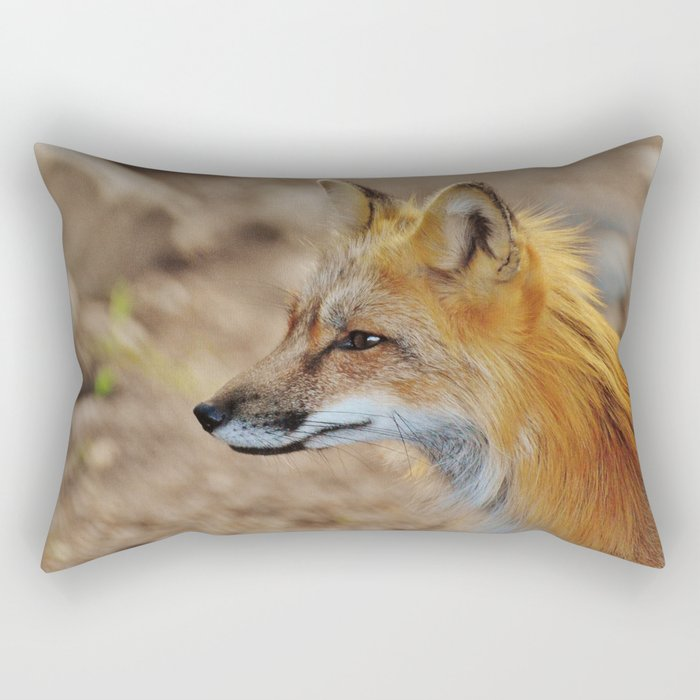Inquisitive Mr. Fox Rectangular Pillow