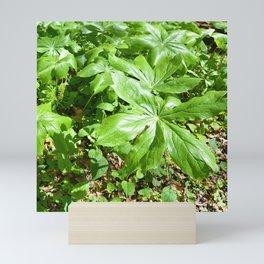 mountain greenery Mini Art Print