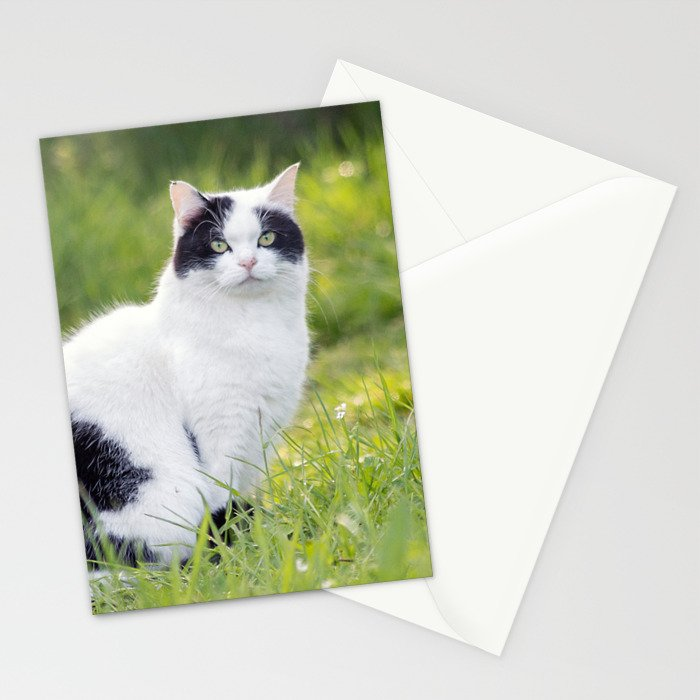 Black and white cat Stationery Cards