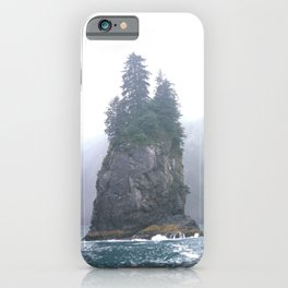 Kenai Fjords Pillars - 1 iPhone Case