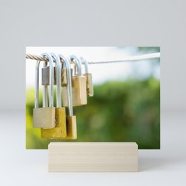 locked love Mini Art Print