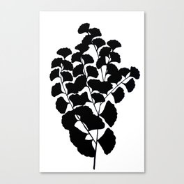 Gingko in Black Canvas Print