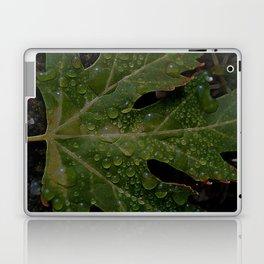 rainy leaf Laptop & iPad Skin