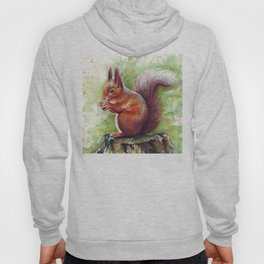 Squirrel and Nut Forest Animals Watercolor Hoody