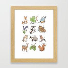 British Woodland Wildlife Framed Art Print