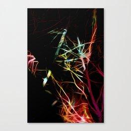 Unseen Canvas Print