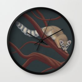 Ringtail in manzanita Wall Clock