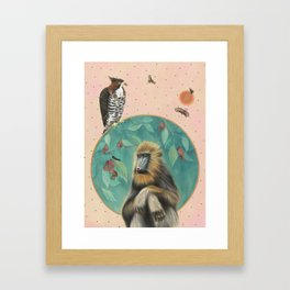 Melancholy Mandrill Framed Art Print