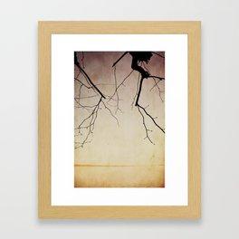 Evening at the lake Framed Art Print