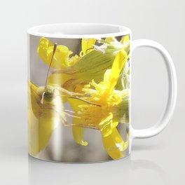 Sulphur Butterfly Imbibing Coffee Mug