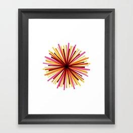 Sunshine Study #2 Framed Art Print
