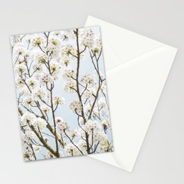 Flowering Springtime Hawthorn tree. Stationery Cards