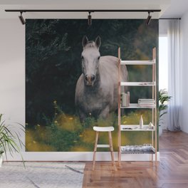 Wild White Horse Wall Mural