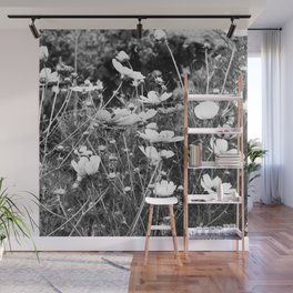 Cosmos flowers  are freely flowering - Black and White Photography Wall Mural