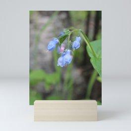 Bluebells Mini Art Print