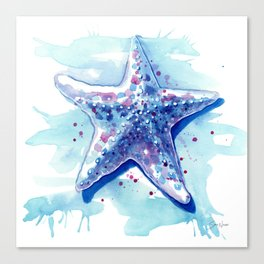 Starfish Waters I Canvas Print