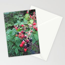 SHINY WILD BLACKBERRIES  (2 of 2) Stationery Cards