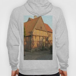 Old Architecture Of Ystad Hoody