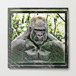 Primate Models: Mad Gorillas 01-01 Metal Print