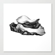 OYSTER Canvas Print