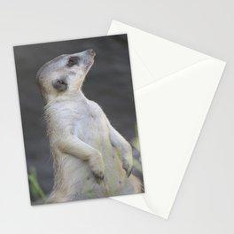 Sentry Meerkat Stationery Cards