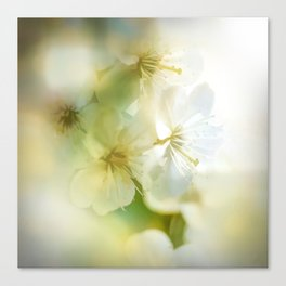 Blossom Style Canvas Print