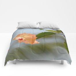 hi-bliss-cus Comforters