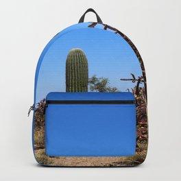 In The Desert Backpack